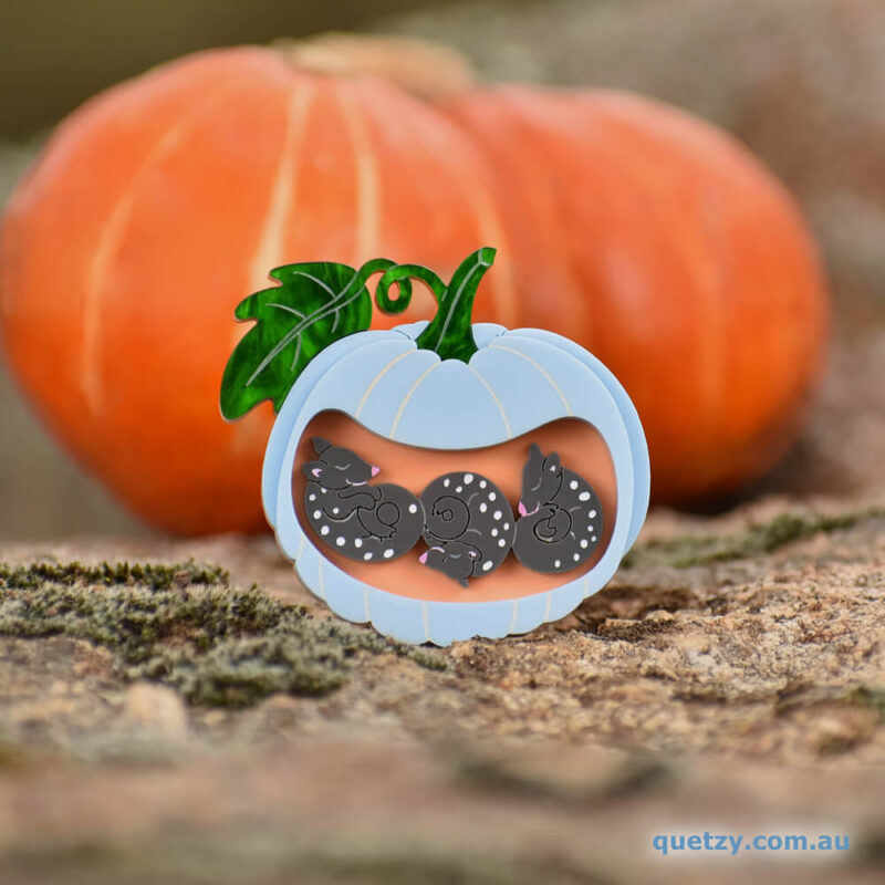 Quoll Hollow acrylic brooch. Designed, laser cut and handmade by Quetzy.